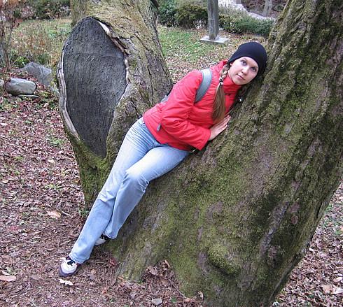 Тоже очень старинное дерево
